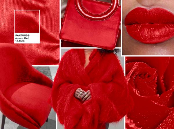 04-sabemos-los-colores-que-llevarai__s-el-proi__ximo-invierno-aurora-red